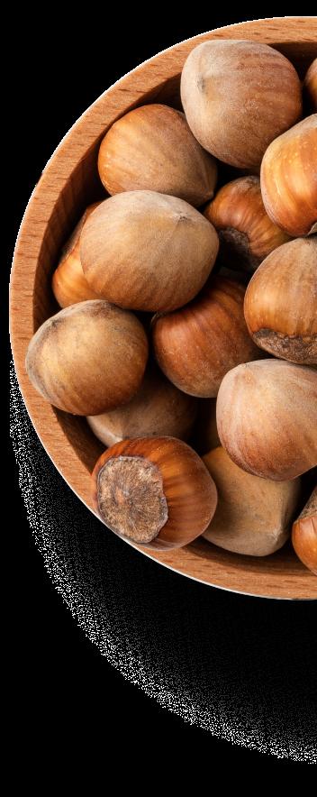 Hazelnuts chest