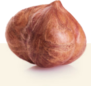 Hazelnuts selection process